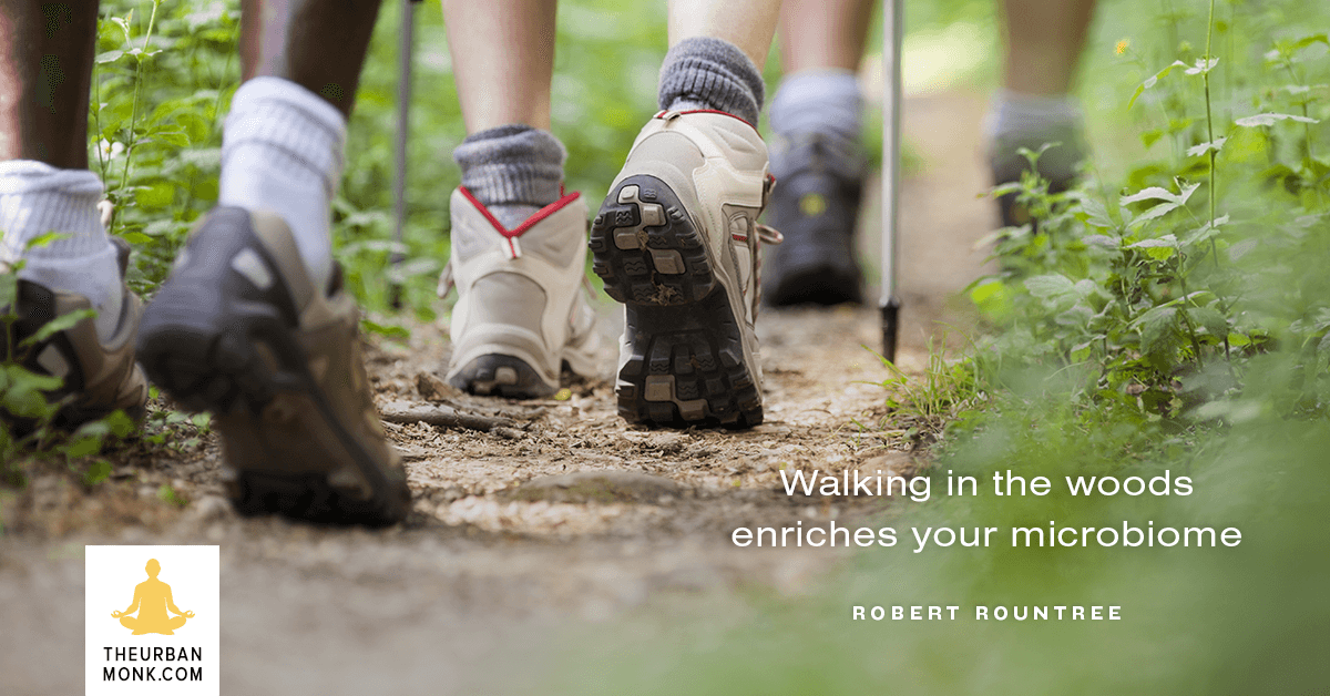 Walking In The Woods Enriches Your Microbiome - #RobertRountree via @Well_Org