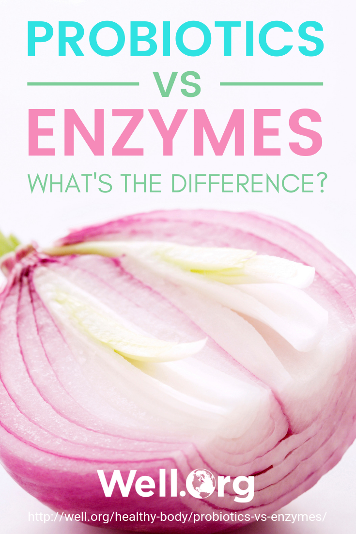 Probiotics vs. Enzymes... What's The Diff? https://www.well.org/healthy-body/probiotics-vs-enzymes/