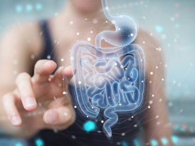 photo of gut health concept, woman touching digitized intestines
