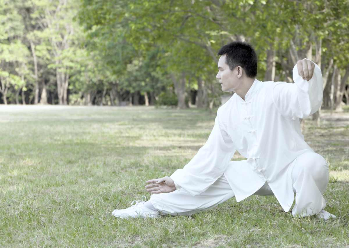 asian man performing kung fu outdoor   types of martial arts   types of martial arts self defense   all types of martial arts