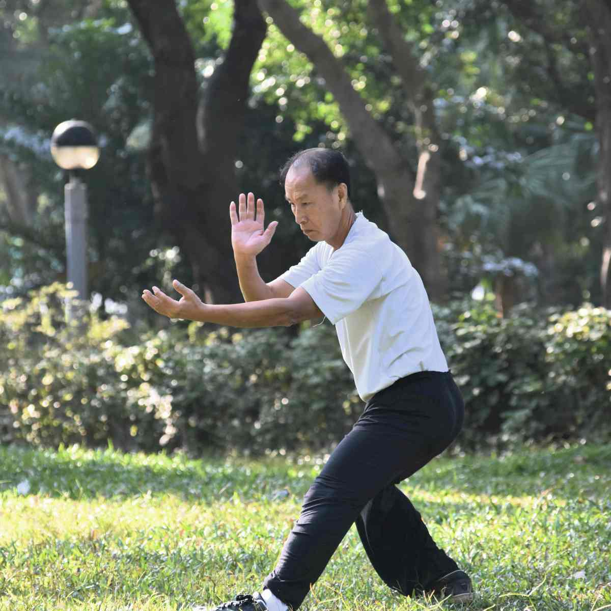 old asian man performing tai chi outdoor by the park   types of martial arts   types of martial arts self defense   all types of martial arts
