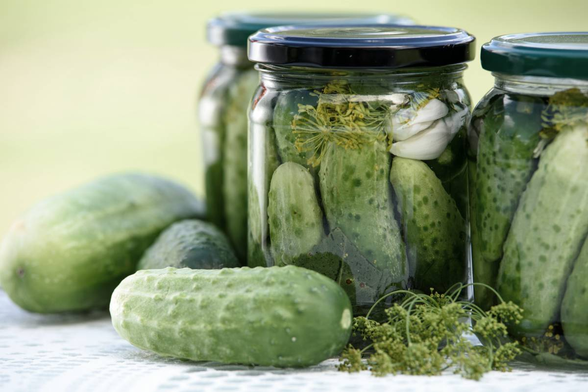 jars of pickled cucumbers and fresh cucumbers preserved | vegan probiotics | best vegan probiotics | does vegan yogurt have probiotics